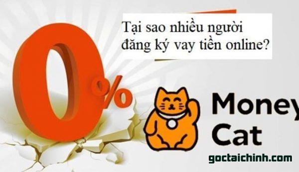 vay tiền money cat