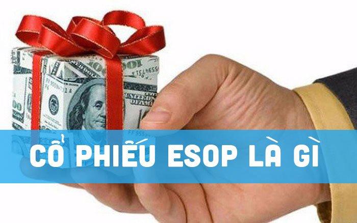 Cổ phiếu ESOP là gì? Lợi ích khi phát hành